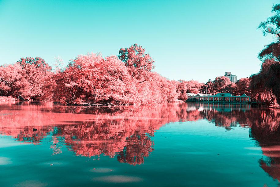 pink-colored-new-york-central-park-paolo-pettigiani-14