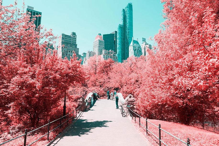 pink-colored-new-york-central-park-paolo-pettigiani-2