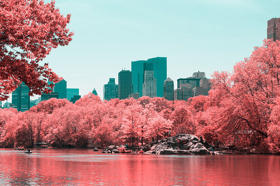 pink-colored-new-york-central-park-paolo-pettigiani-3