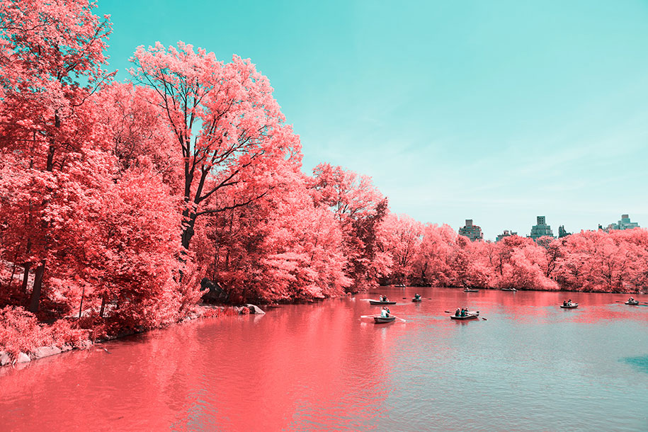 pink-colored-new-york-central-park-paolo-pettigiani-8