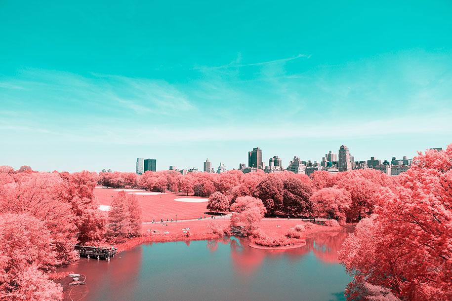 pink-colored-new-york-central-park-paolo-pettigiani-9