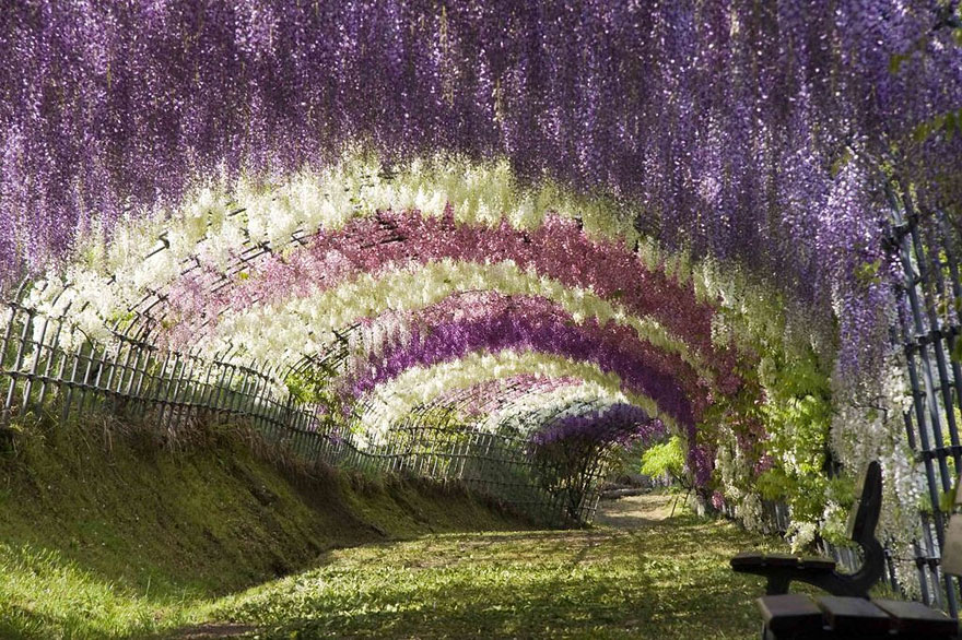 beautiful-places-tourist-attractions-japan-11