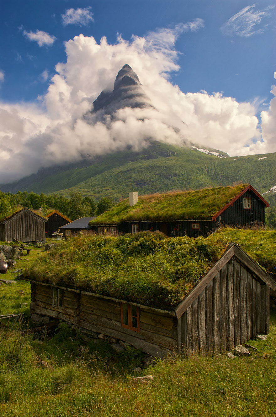 grass-roofs-green-houses-scandinavia-4