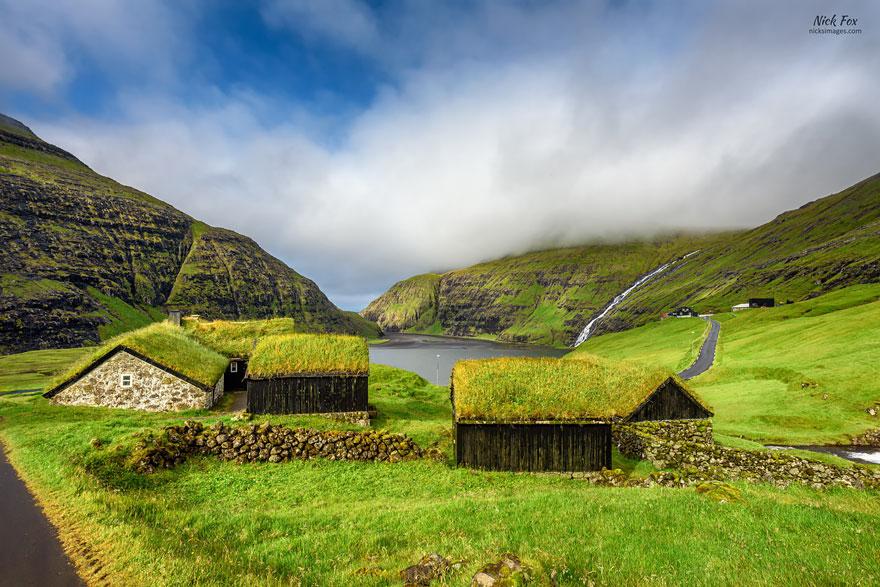 grass-roofs-green-houses-scandinavia-5