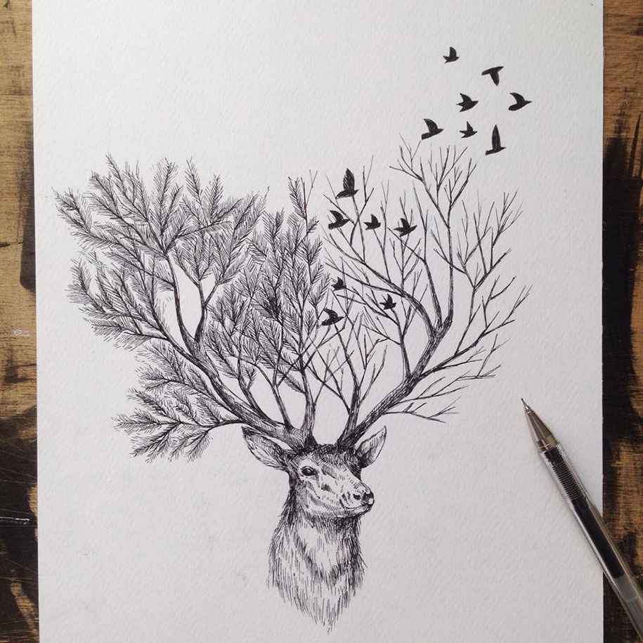 pen-ink-animal-trees-illustrations-alfred-basha-4