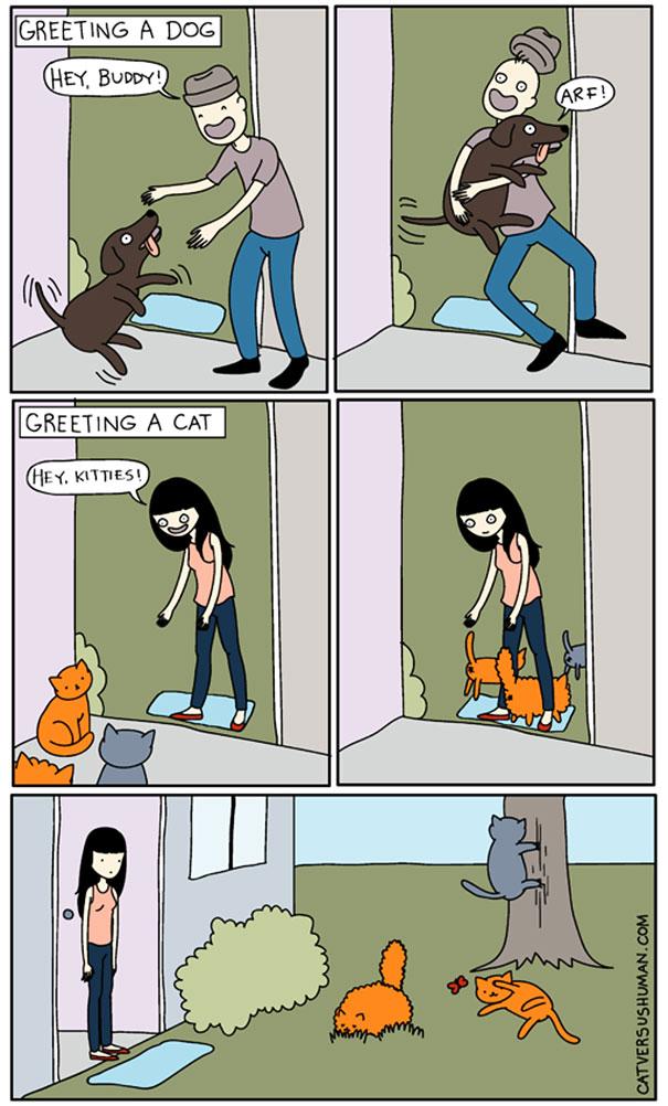 funny-comics-cat-vs-human-yasmine-surovec-11