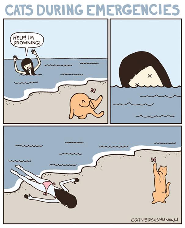 funny-comics-cat-vs-human-yasmine-surovec-6
