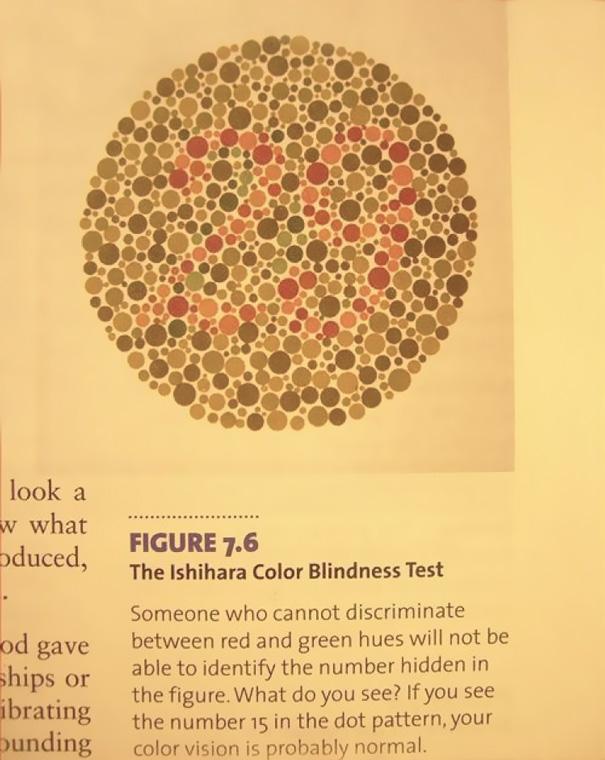 funny-textbook-fails-20