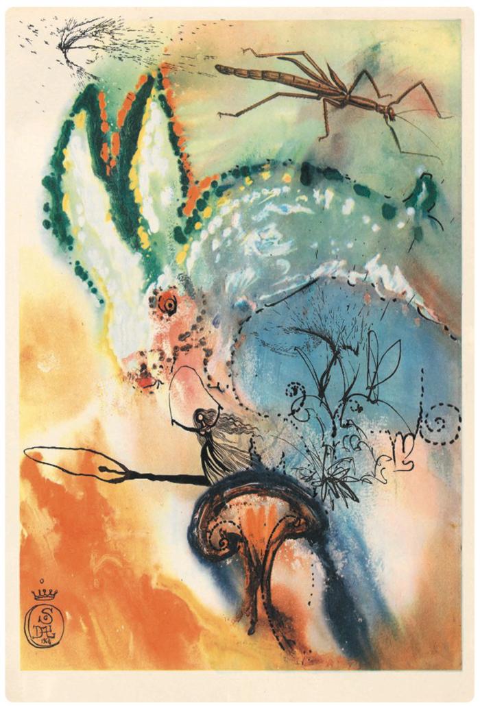 salvador-dali-illustrations-alice-in-wonderland-6