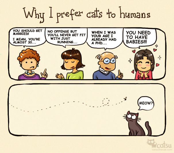 life-with-funny-cats-comics-catsu-5