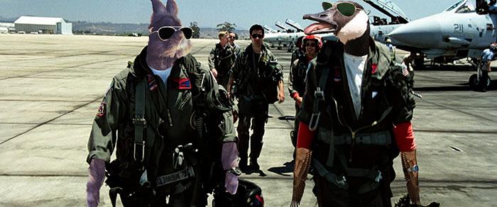 sunglasses-rabbit-photoshop-battle-35