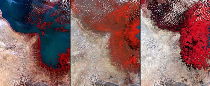 Lake Chad in Africa is seen in 1972 (left), 1987 (center), and 2002 (right). The once sixth biggest lake of the world is now disappearing due to excessive drought