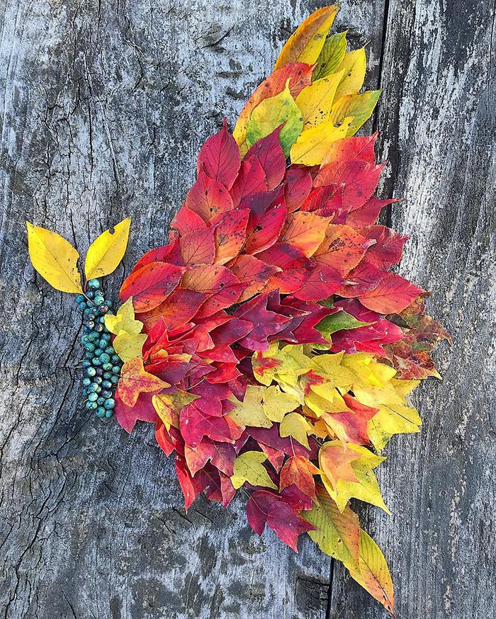 leaf-art-japan-10