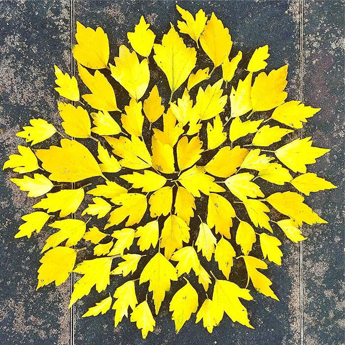 leaf-art-japan-9