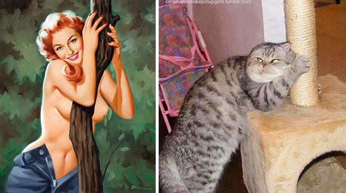 funny-cats-vintage-pin-up-girls-8