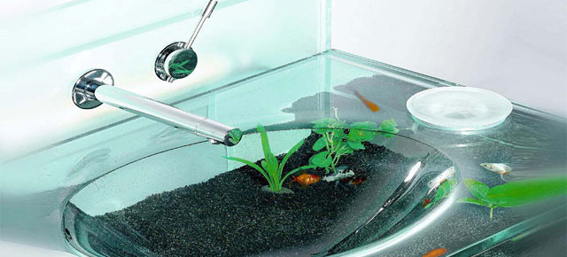 Cool aquariums demilked for Awesome fish tanks