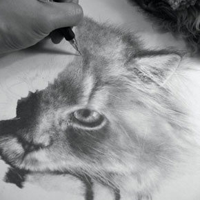 Photorealistic Pencil Drawings by Paul Lung