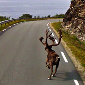30 Shocking and Unexpected Google Street View Photos