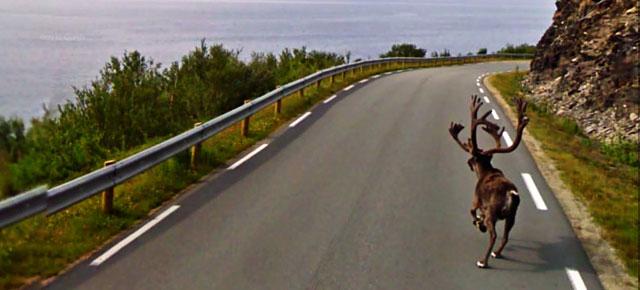 funny-google-street-view-photos-thumb640