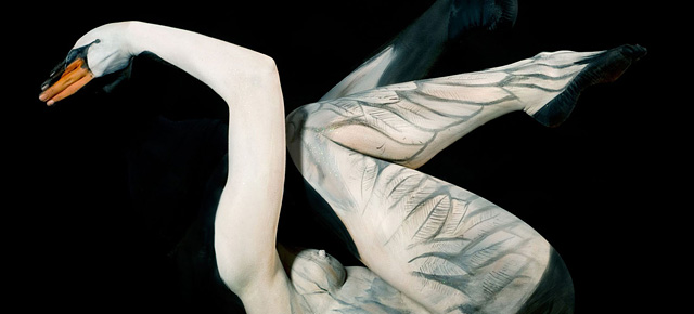 Body Art Illusions Body Art Pictures