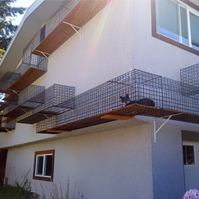 mirror fences reflect the ever changing landscapes. Black Bedroom Furniture Sets. Home Design Ideas
