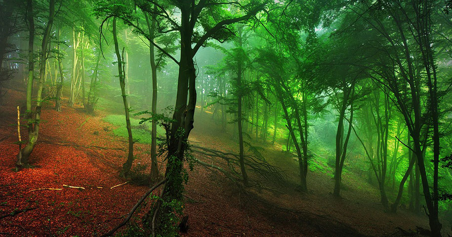 Brothers Grimm S Homeland In Photographic Illustrations By