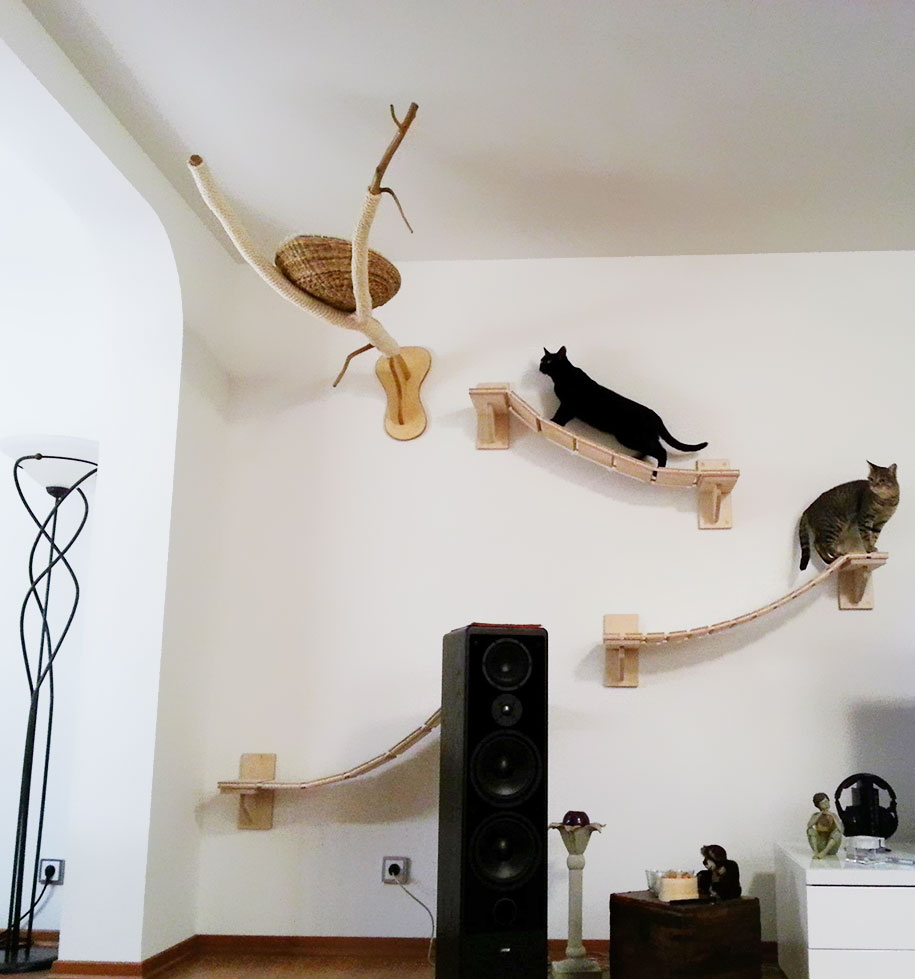 rooms turned into cat playgrounds by goldtatze. Black Bedroom Furniture Sets. Home Design Ideas