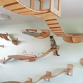 Man Spends 35 000 To Turn His House Into The Playground