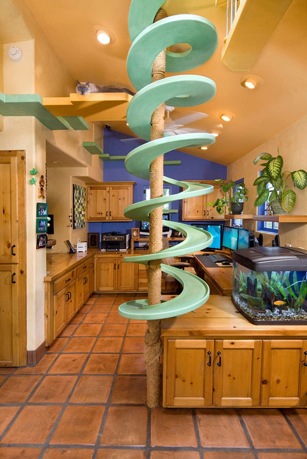 Man spends 35 000 to turn his house into the playground Make my home design
