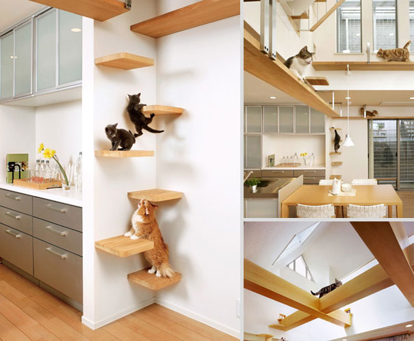 21 Creative Furniture Design Ideas For Pets Demilked