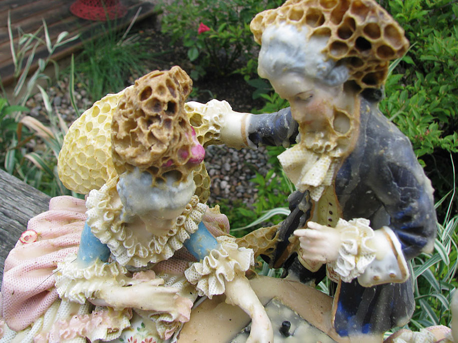 In Collaboration With Bees Artist Aganetha Dyck Creates