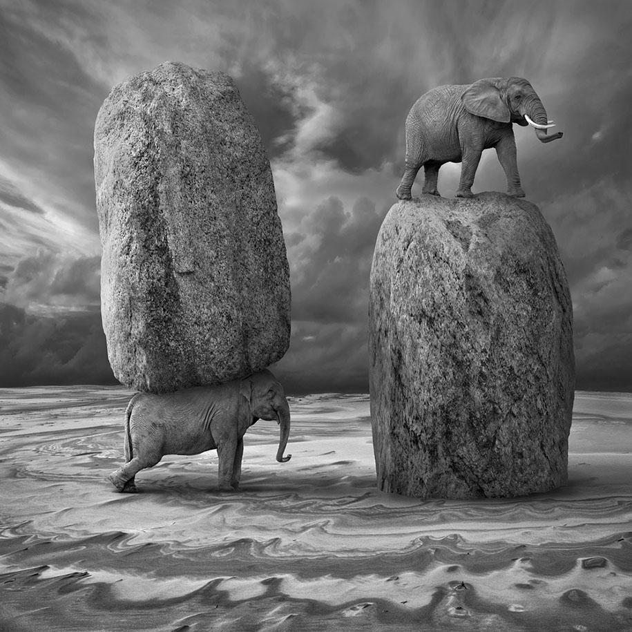Surreal Photo Manipulations By Photographer Dariusz