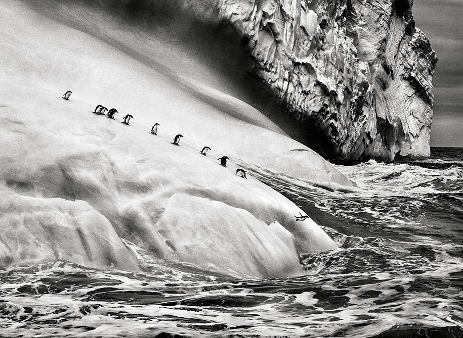 Breathtaking Photography By Photojournalist Sebastião Salgado