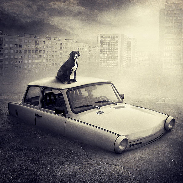 Photographer Creates Surreal Images To Promote Shelter