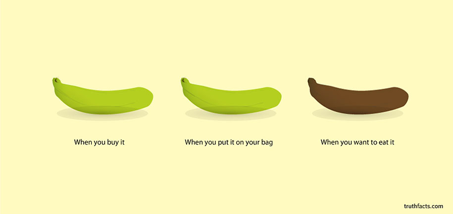 Circles Of Innovation Infographics Painfully True Facts - 33 funny true facts everyday life