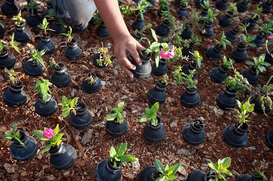 palestinian woman plants flowers in israeli army s spent tear gas grenades. Black Bedroom Furniture Sets. Home Design Ideas