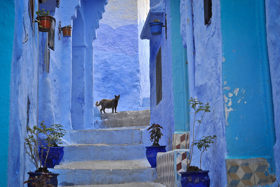 Trend blue town walls chefchaouen morocco