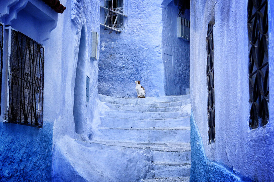 blue-town-walls-chefchaouen-morocco-5