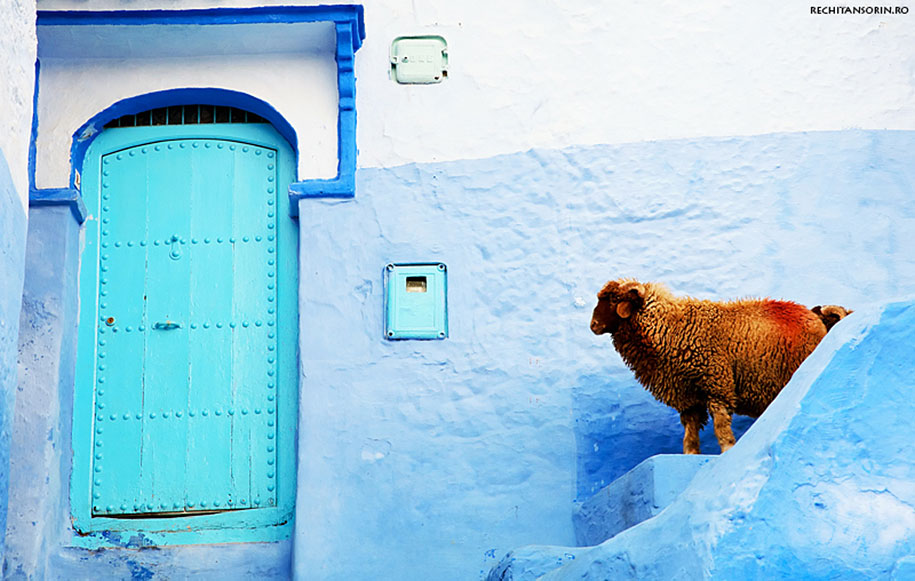 blue-town-walls-chefchaouen-morocco-7