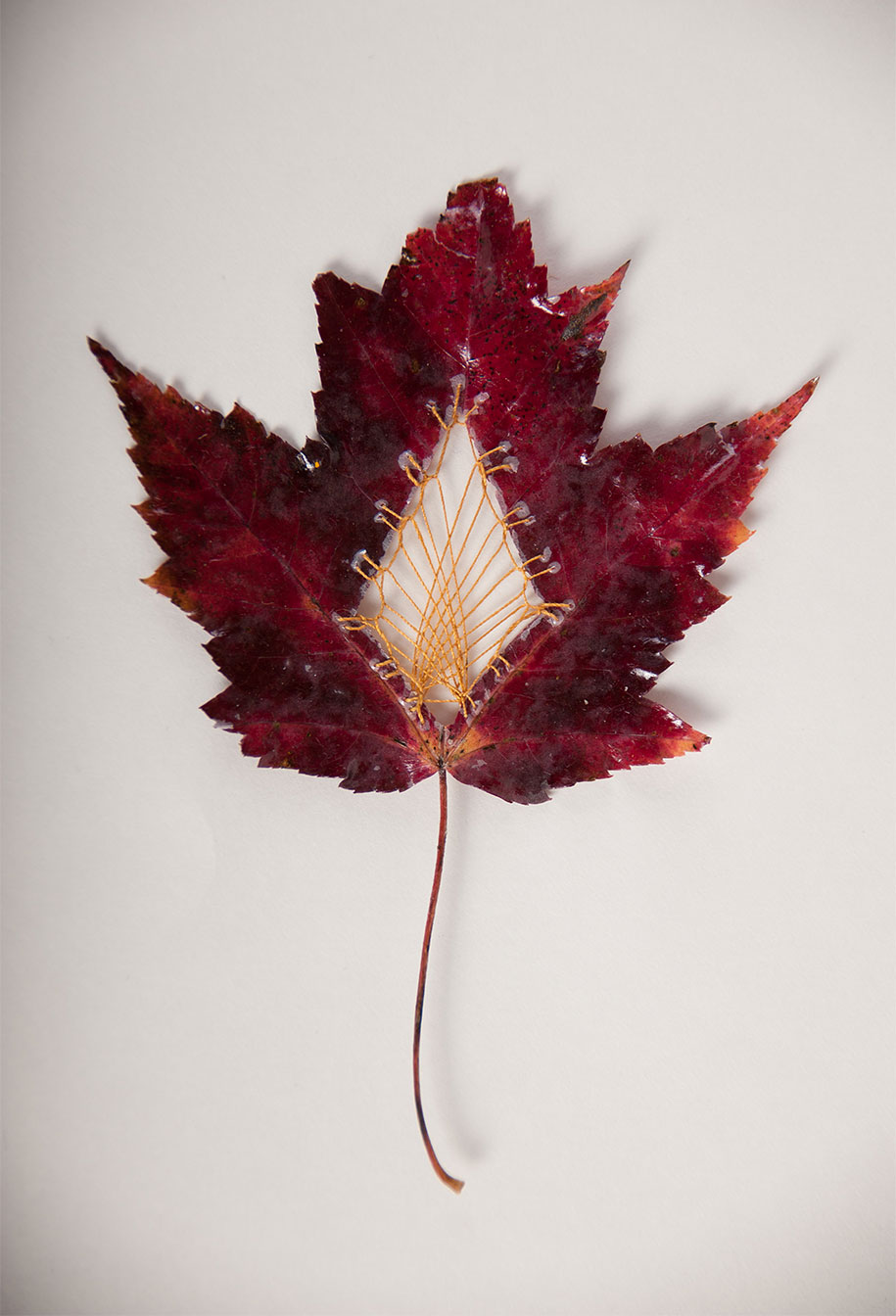 embroidery-art-stitched-leaves-hillary-fayle-15