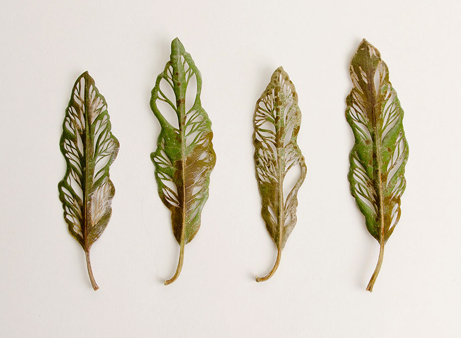 Leaves embroidered in extraordinary detail by artist