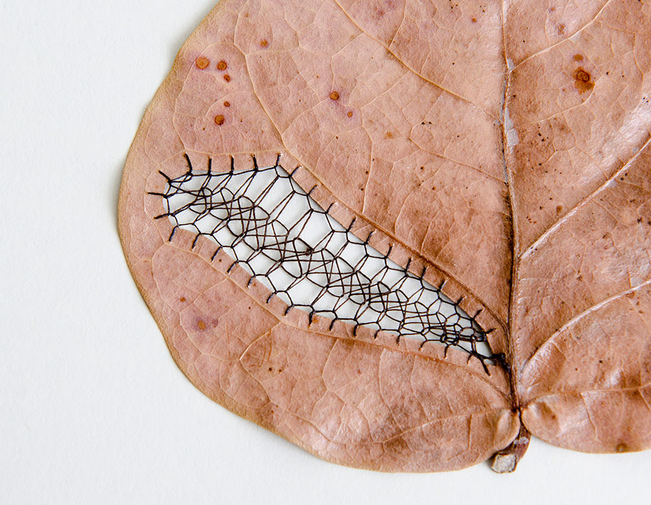 embroidery-art-stitched-leaves-hillary-fayle-5