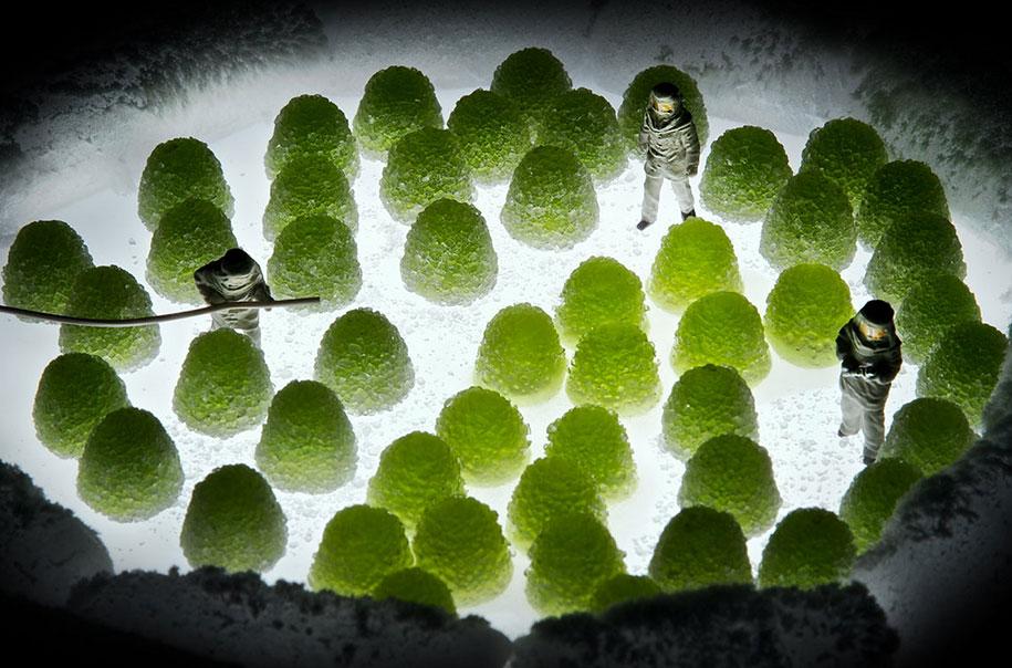 minimize-food-miniature-photography-diorama-william-kass-25