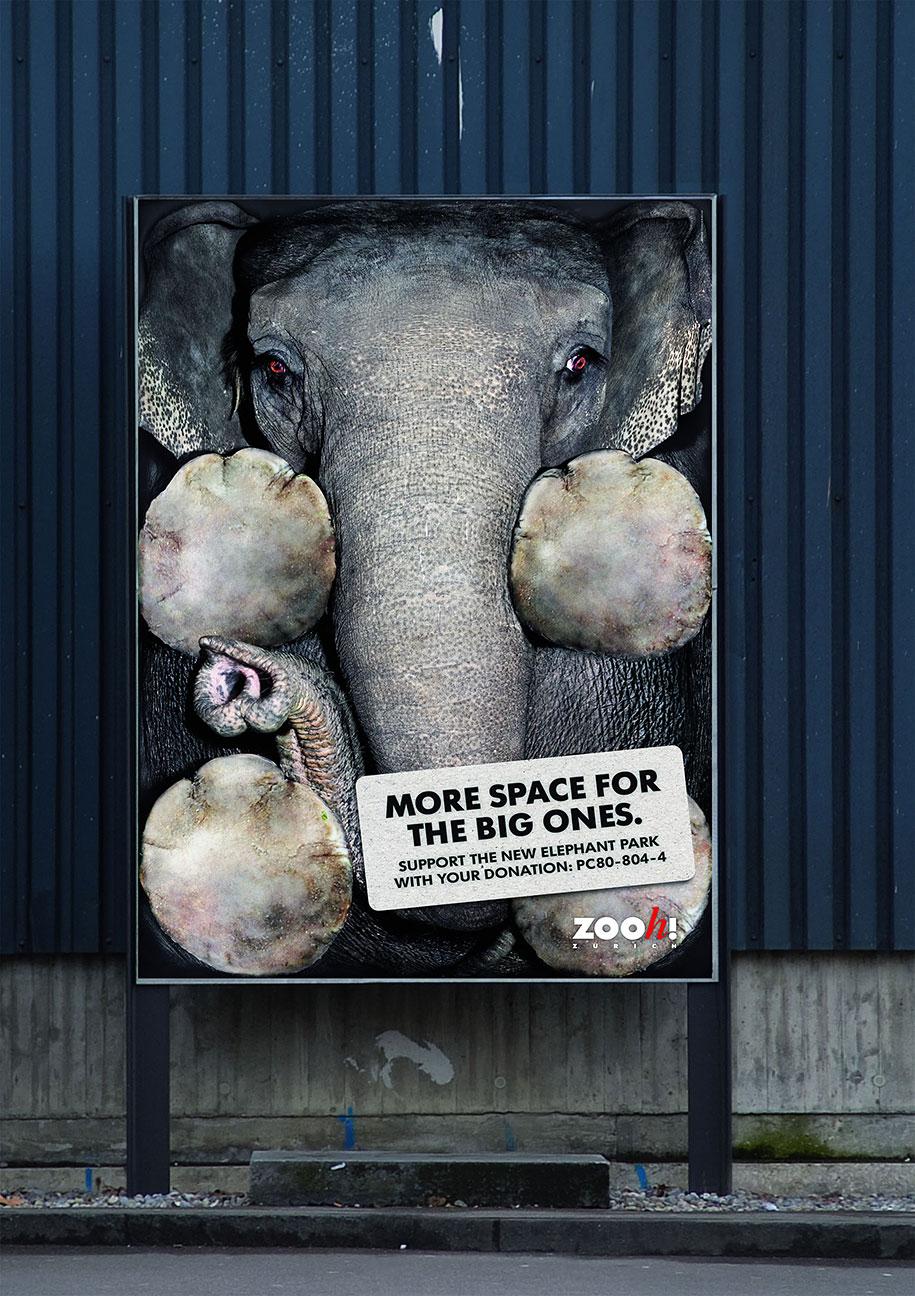 Powerful Animal Ads - Public Social Ads Animals