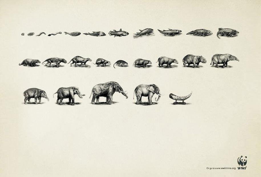 social-awareness-powerful-animal-ads-33
