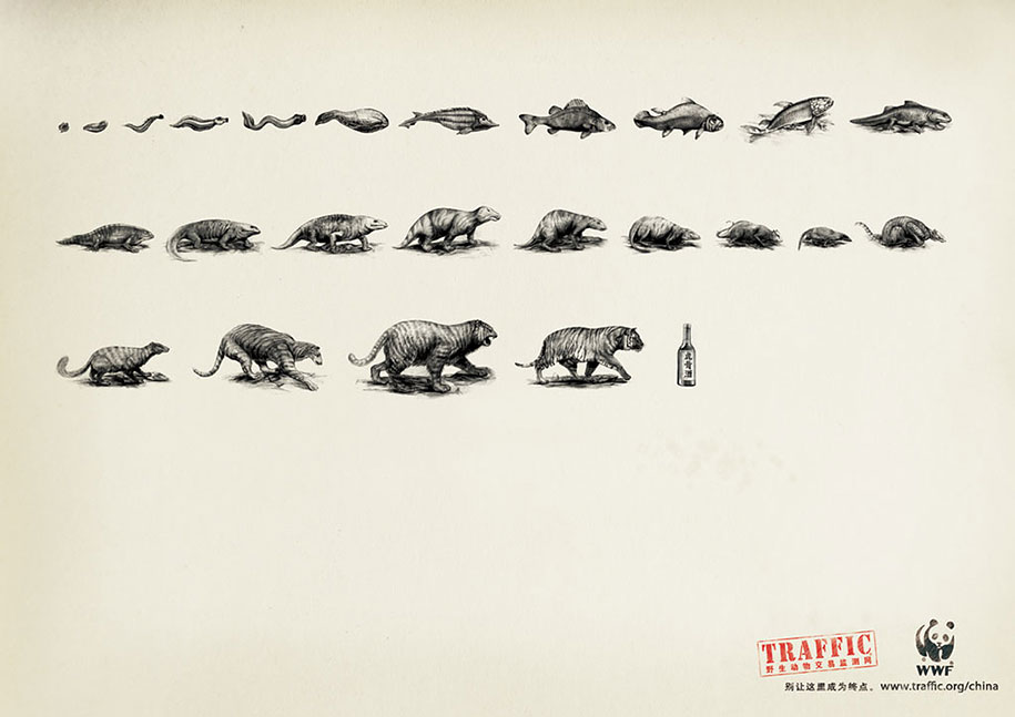 social-awareness-powerful-animal-ads-34