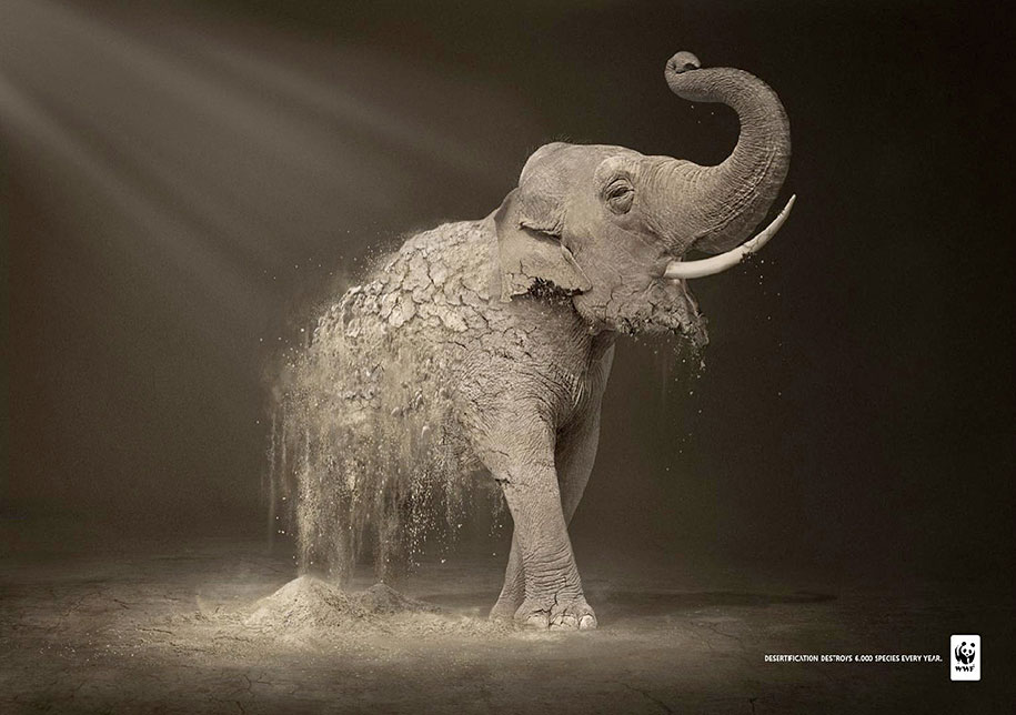 social-awareness-powerful-animal-ads-39