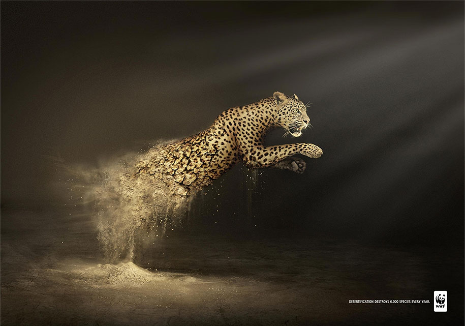 social-awareness-powerful-animal-ads-40