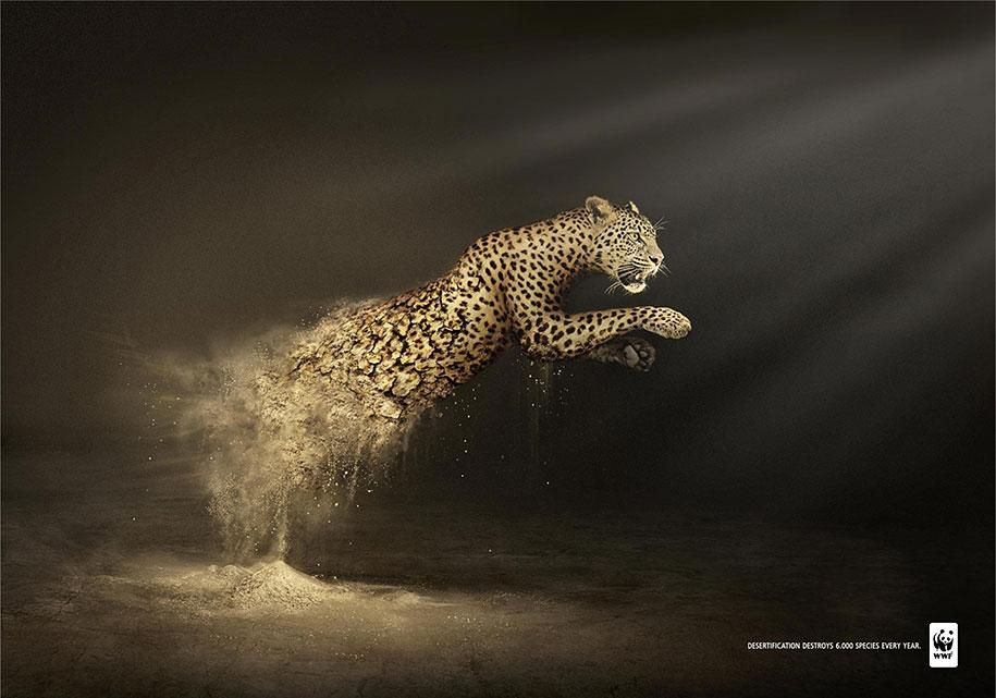 social-awareness-powerful-animal-ads-40