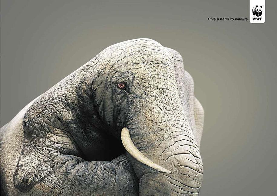 social-awareness-powerful-animal-ads-43